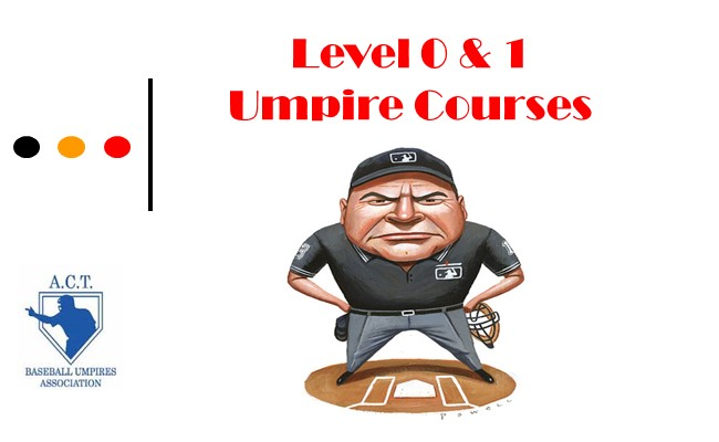 Umpire Training Course 2017/18